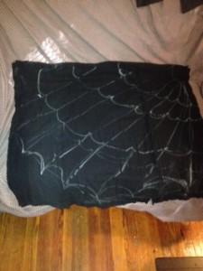 Spider Web (11)