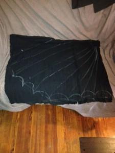 Spider Web (9)